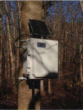 SeniMax Data logger / Gateway attached to a tree